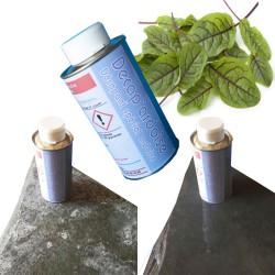 Décap'ardoise est un décapant spécial pour les surfaces en ardoise et en schistes, à base de produits naturels